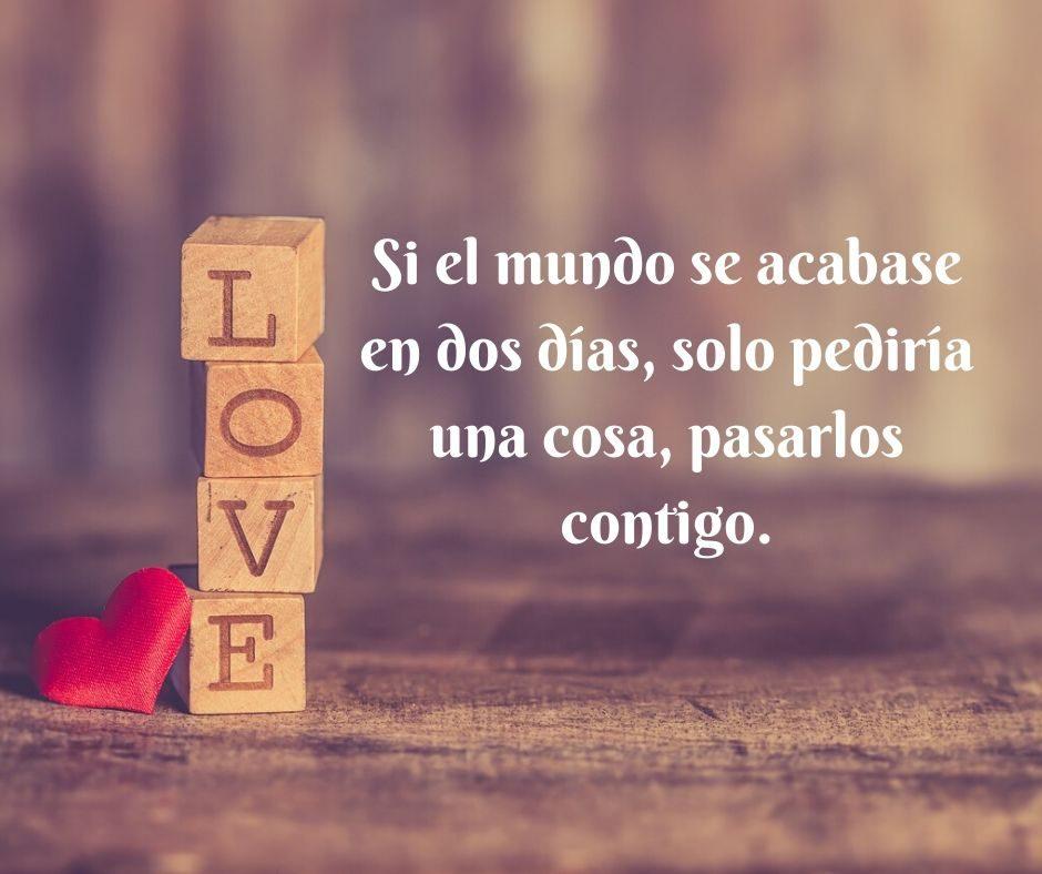 Las Mejores Frases Y Dedicatorias De Amor Para Flores